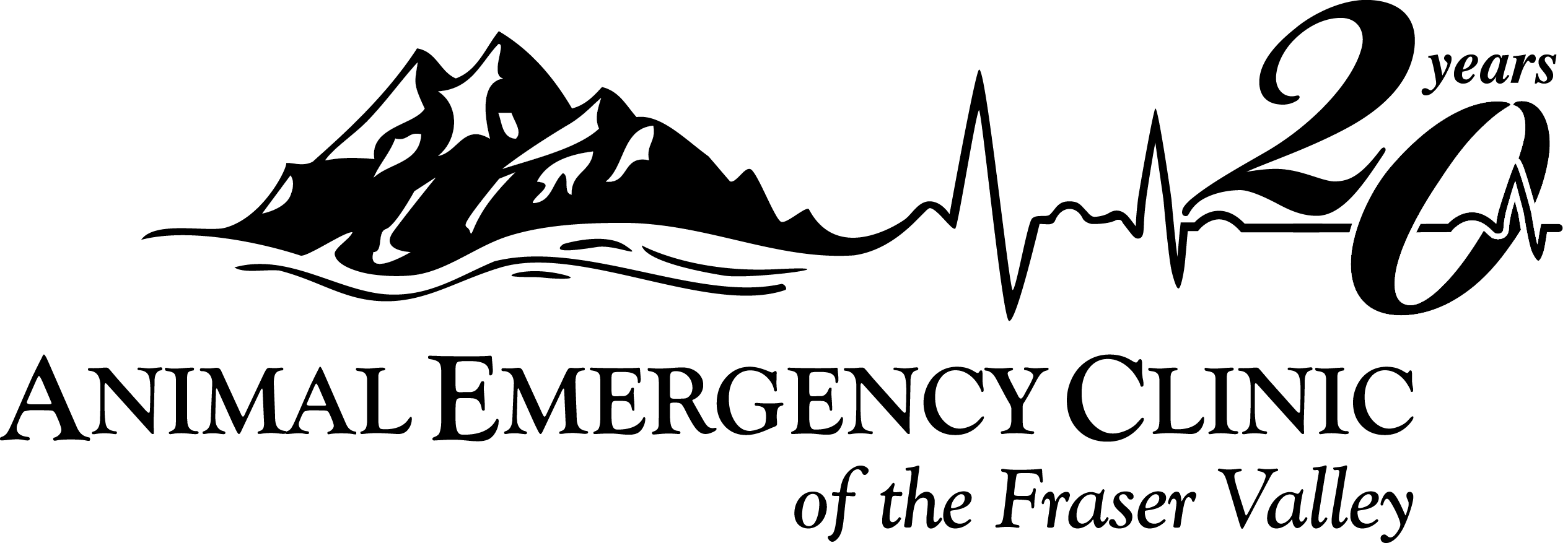aecfv-20th-logo