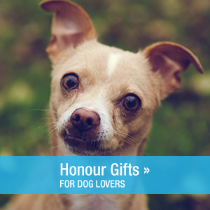 dog-lovers-honour-gifts